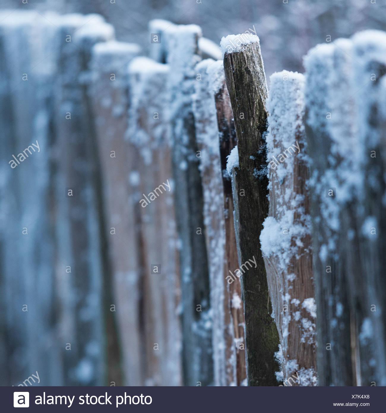Barrière en bois recouvert de neige Photo Stock