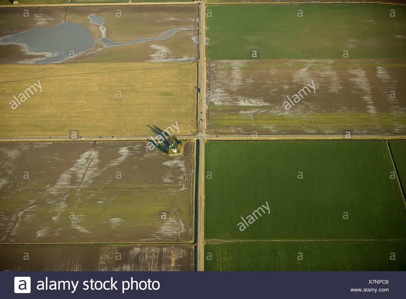 Terres agricoles dans la vallée de la Skagit, Washington Photo Stock