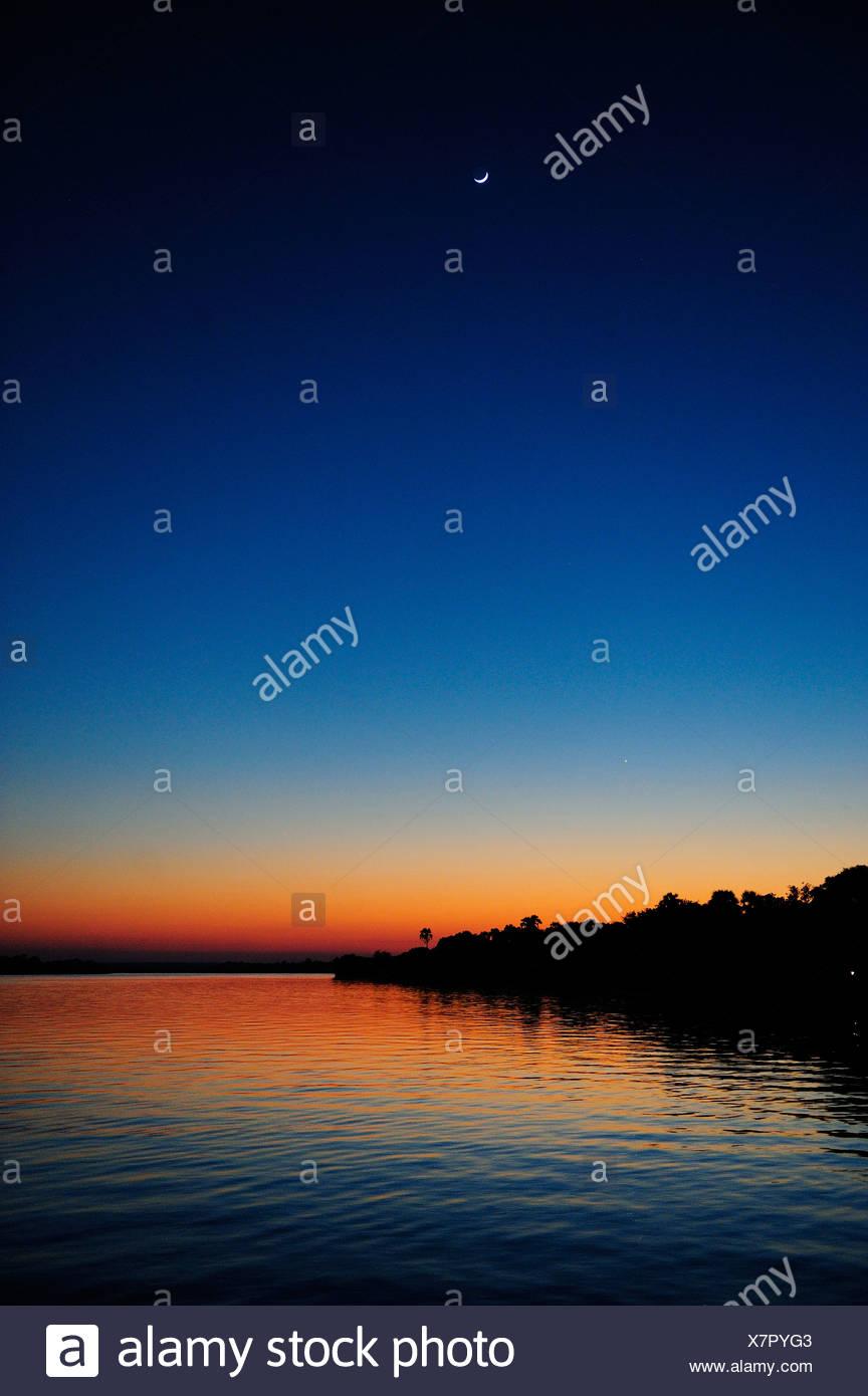 L'Afrique, le Zimbabwe, le Zambèze, fleuve, Afrique australe, crépuscule, palm, crescent, lune, nuit, vertical Photo Stock