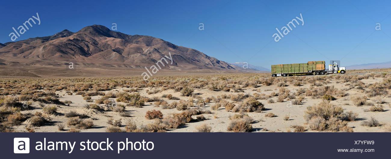 Camion, bottes de paille, désert, buissons, transports, près de Big Pine, Californie, USA, United States, Amérique, Photo Stock