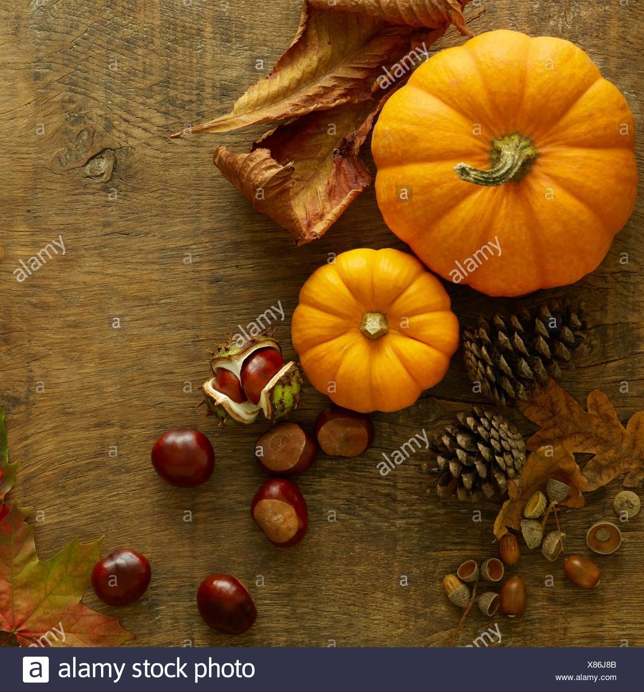 Citrouilles, pommes de pin, conkers et les feuilles d'automne, toujours la vie. Photo Stock