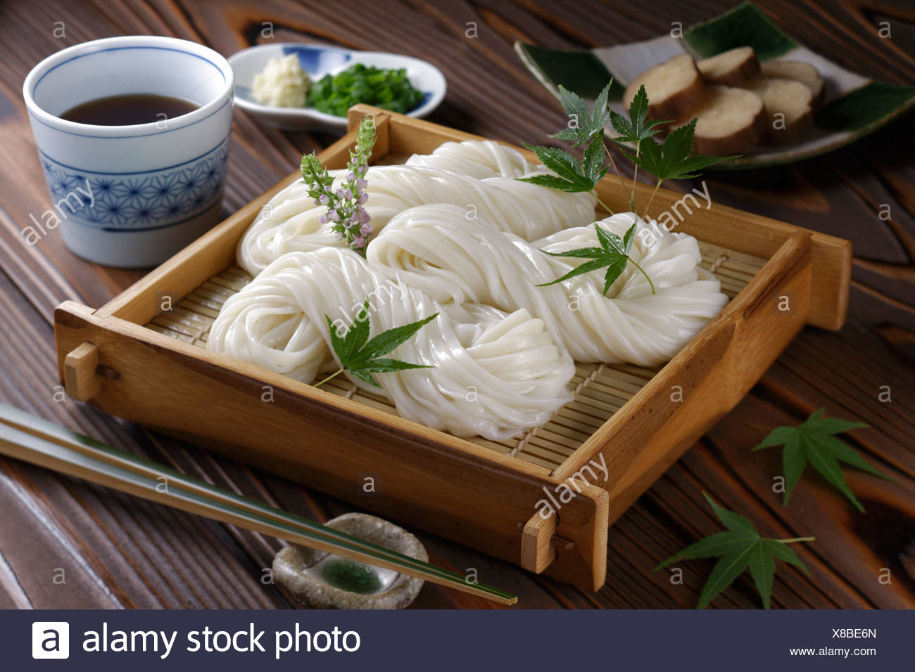 Inaniwa-udon Photo Stock