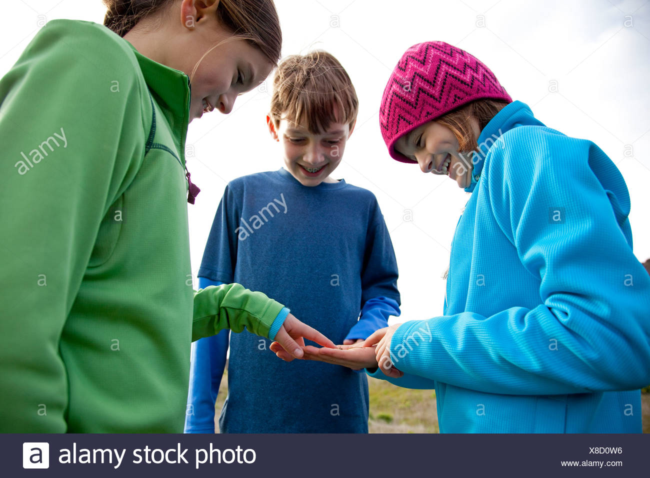 Trois enfants examinant un bug trouvé lors d'une randonnée. Photo Stock