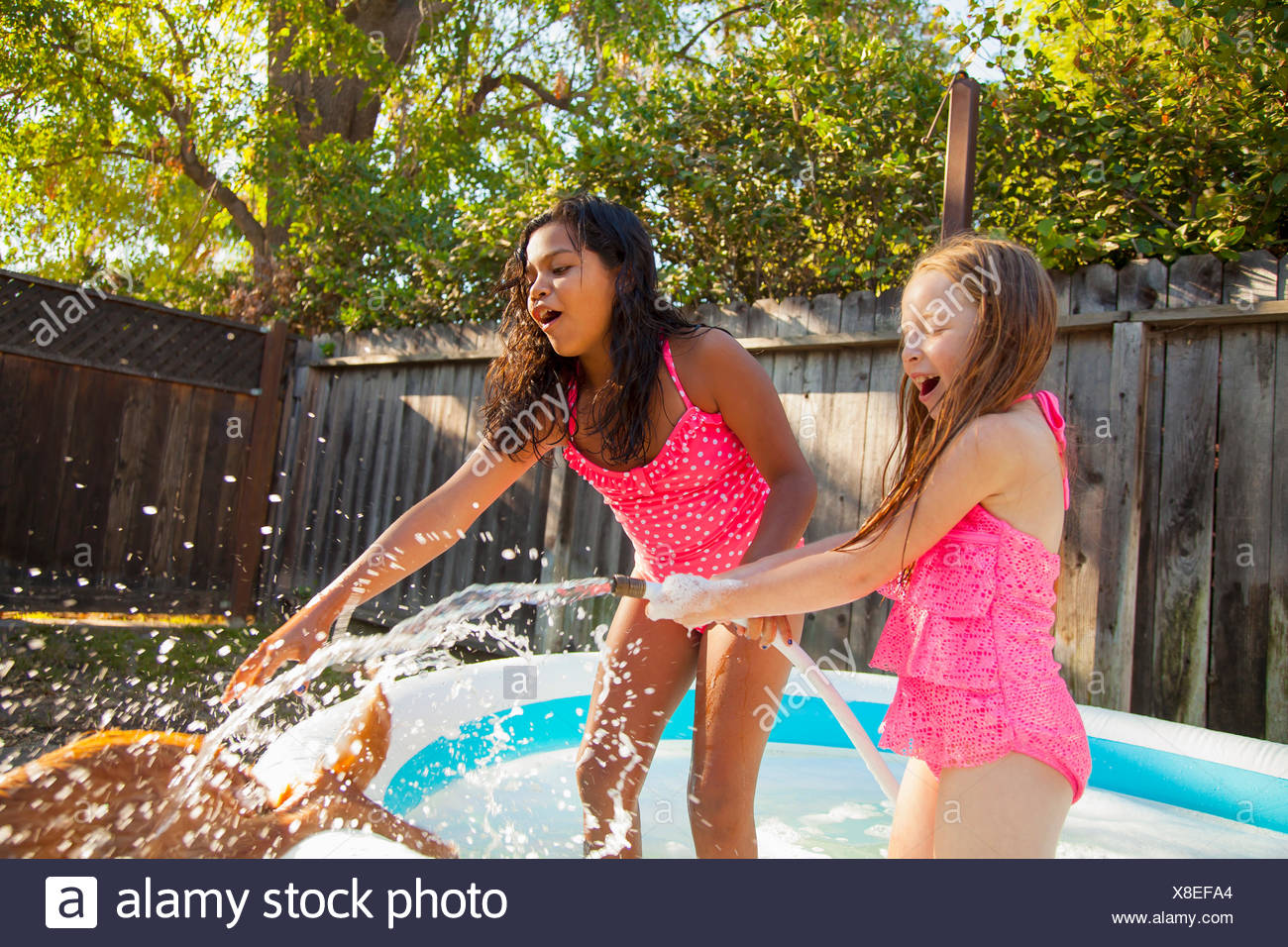 Deux jeunes filles aux éclaboussures chien avec arrosage en petit bassin de jardin Photo Stock