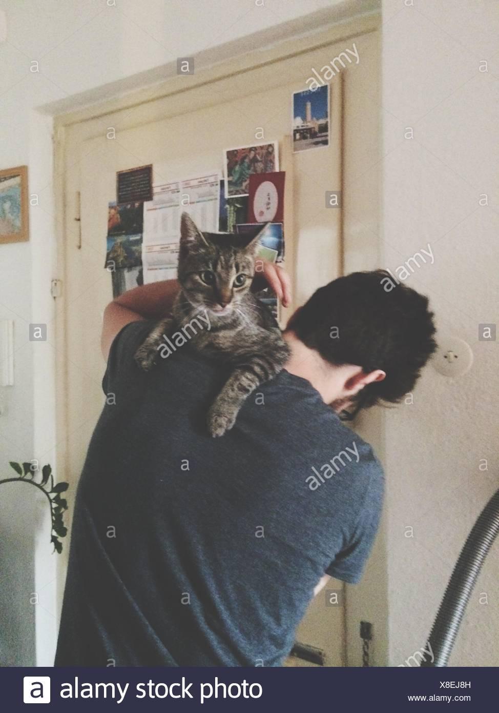 Vue arrière d'un homme portant Cat Photo Stock