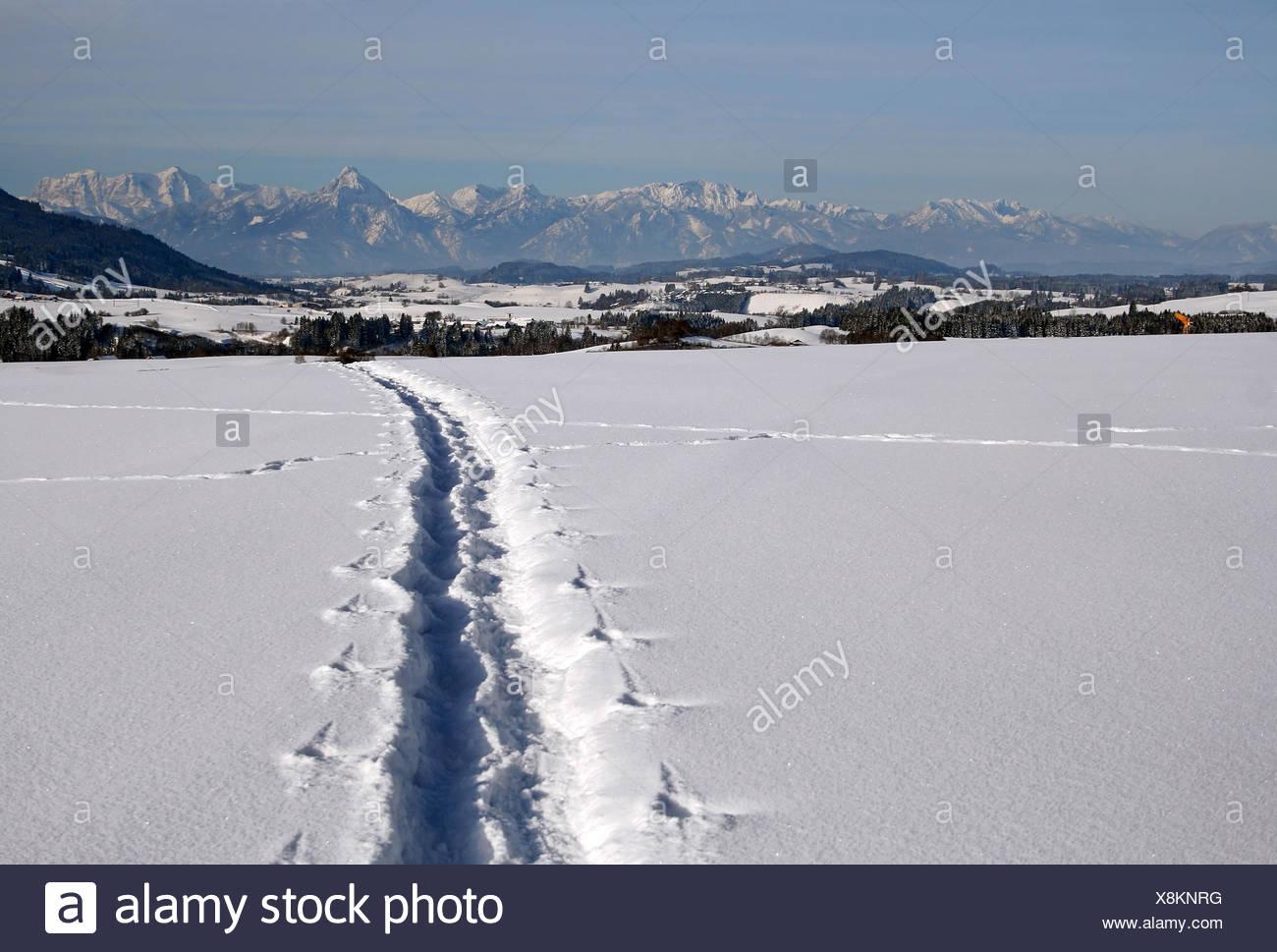 Sens d'hiver montagne Photo Stock