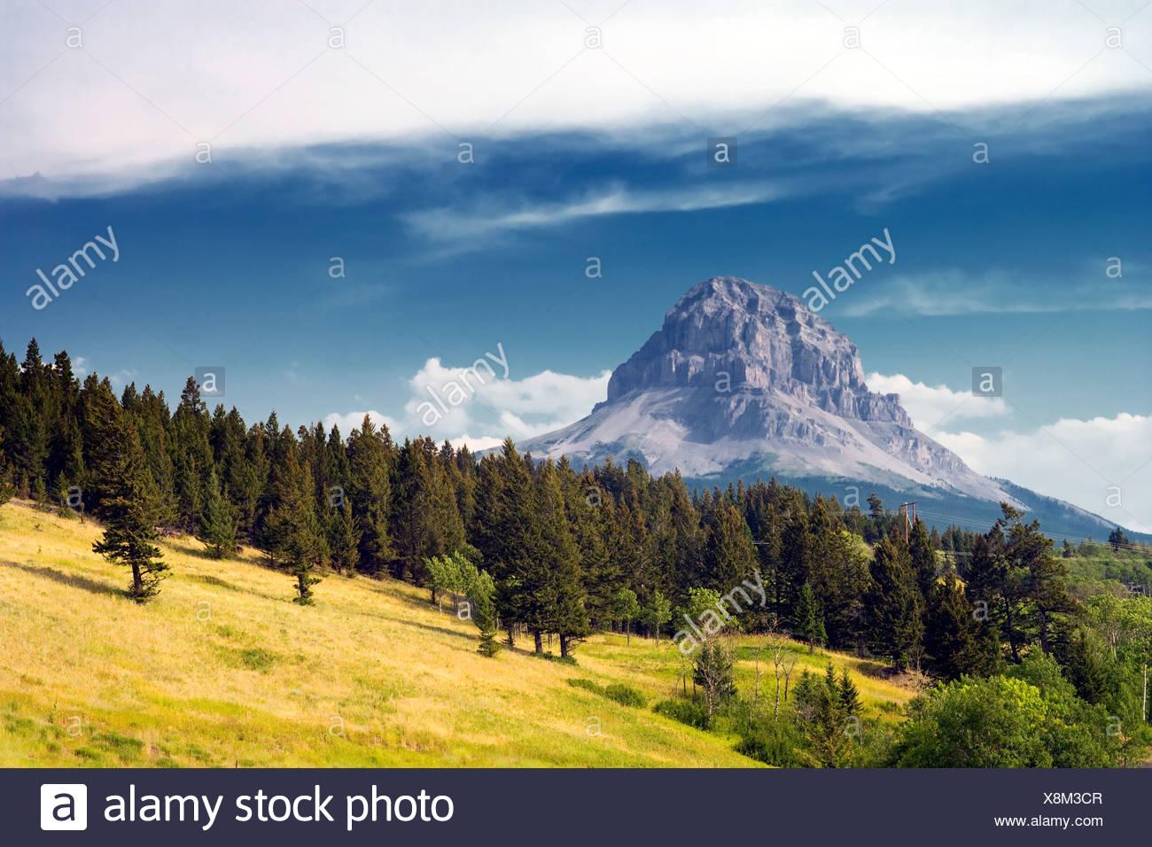 Nid-de-Mountain, Alberta, Canada, Rocheuses, Photo Stock