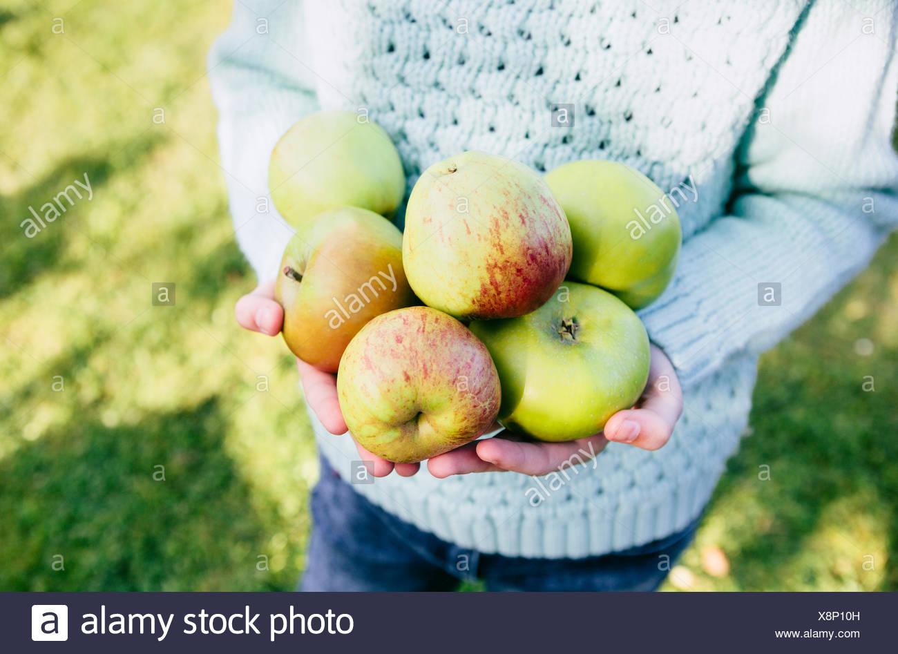 Girl holding homegrown pommes dans les mains Photo Stock