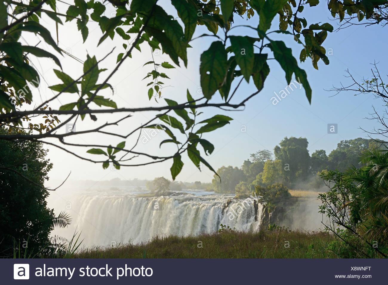 L'Afrique, le Zimbabwe, le Zambèze, fleuve, le sud de l'Afrique, les chutes Victoria, cascade, eau, canyon, gorge Photo Stock