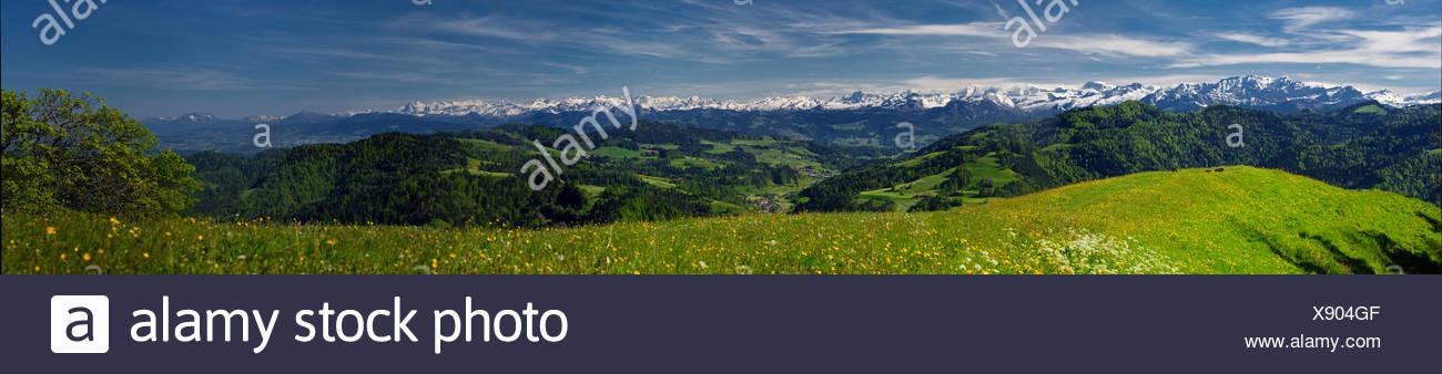 Hautes terres de Zurich, look, Hörnli, Alpes Bernoises, montagne, montagnes, le canton de Zurich, Suisse, Europe, Photo Stock