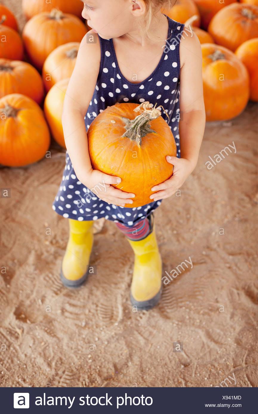 Girl picking pumpkin Photo Stock