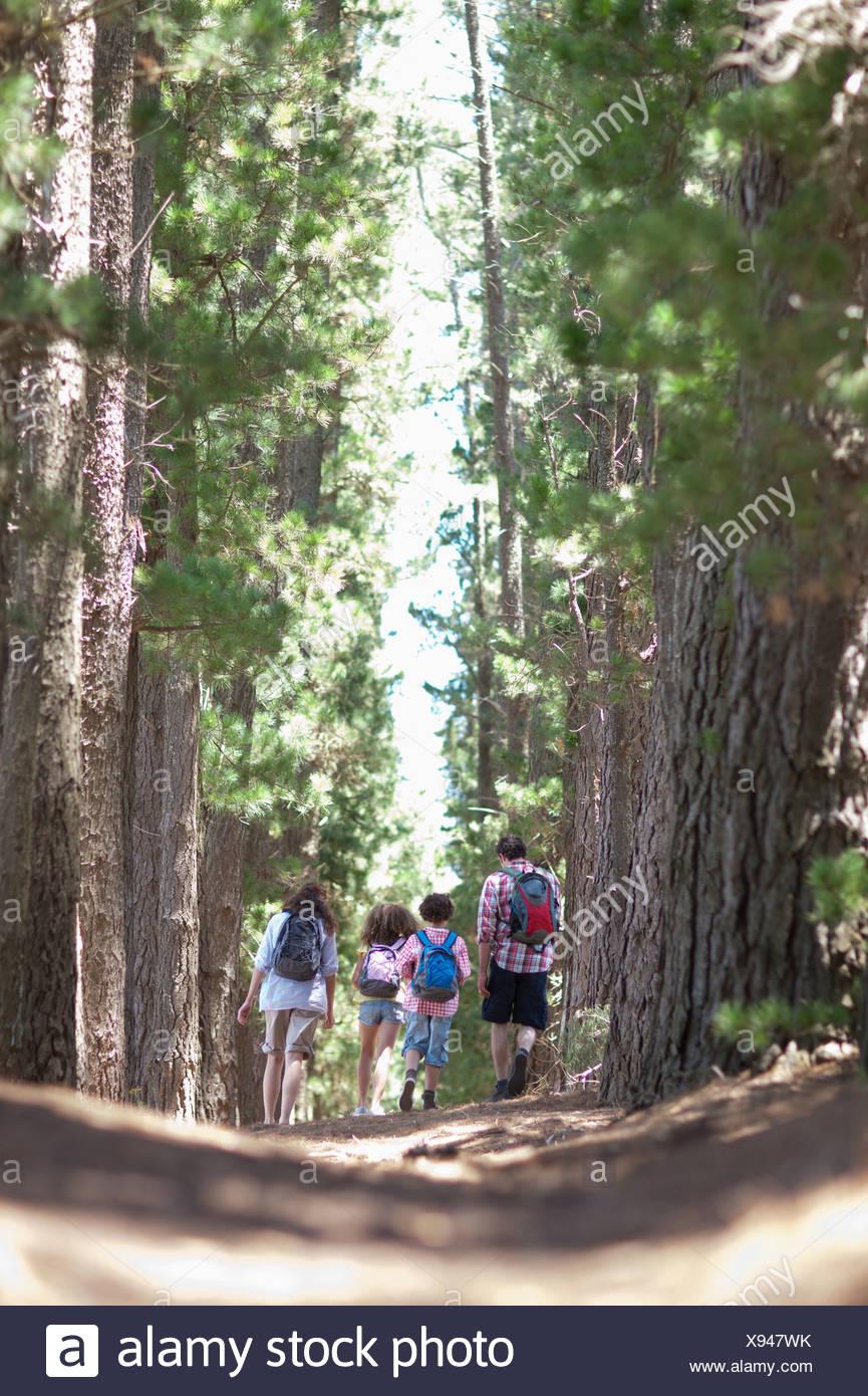 Randonnée en famille dans les bois Photo Stock