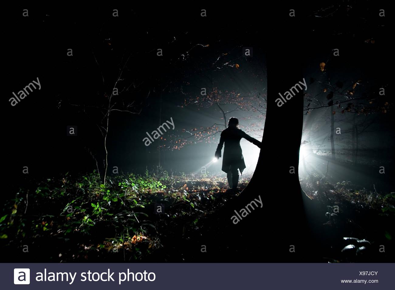 Forest,sortir,,spooky spooky Photo Stock