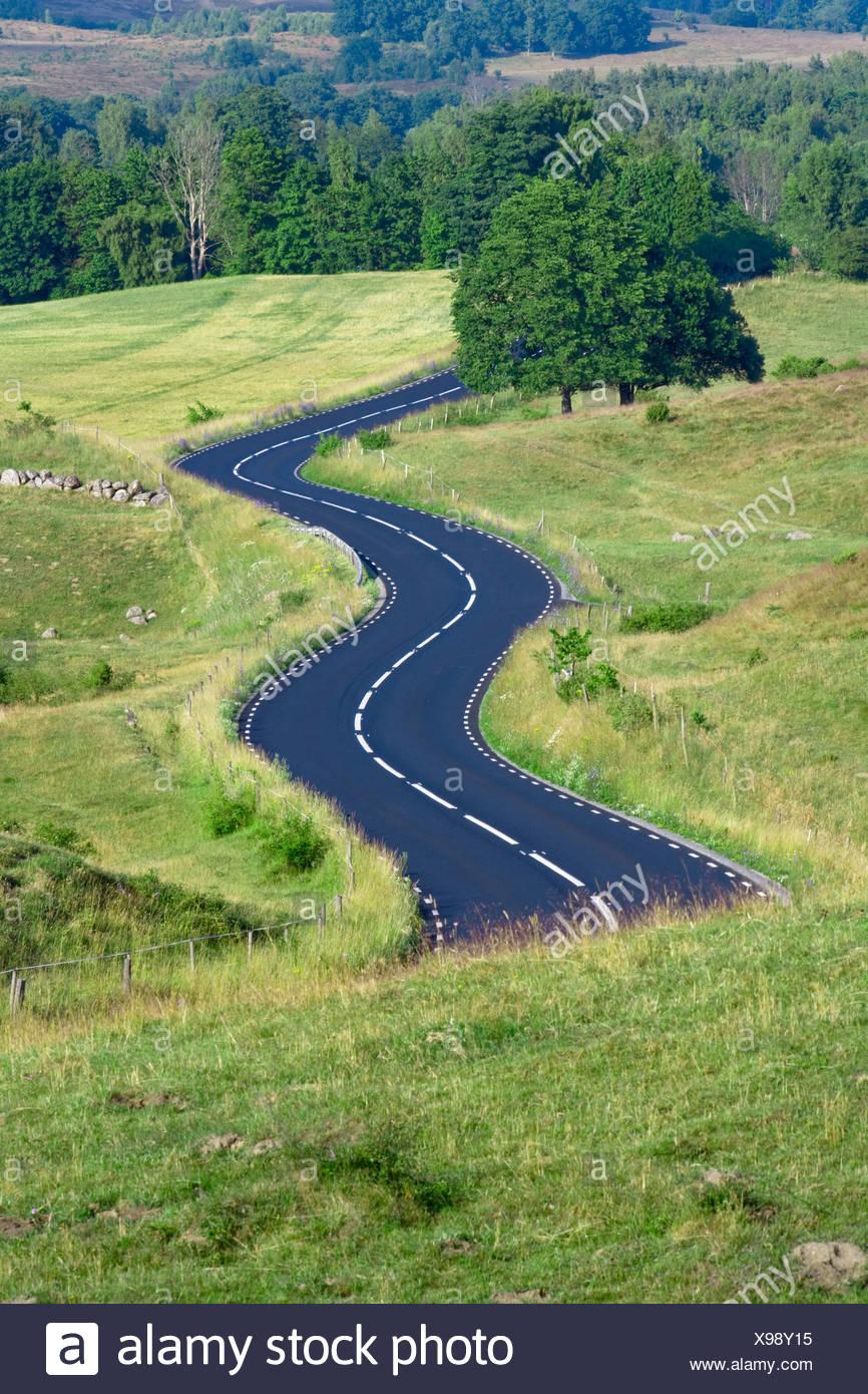 La Suède l'asphalte routier campagne sinueuse Skäne Concepts Concept Country Road Country Roads Country side courbes Courbe de Jour Jour Photo Stock