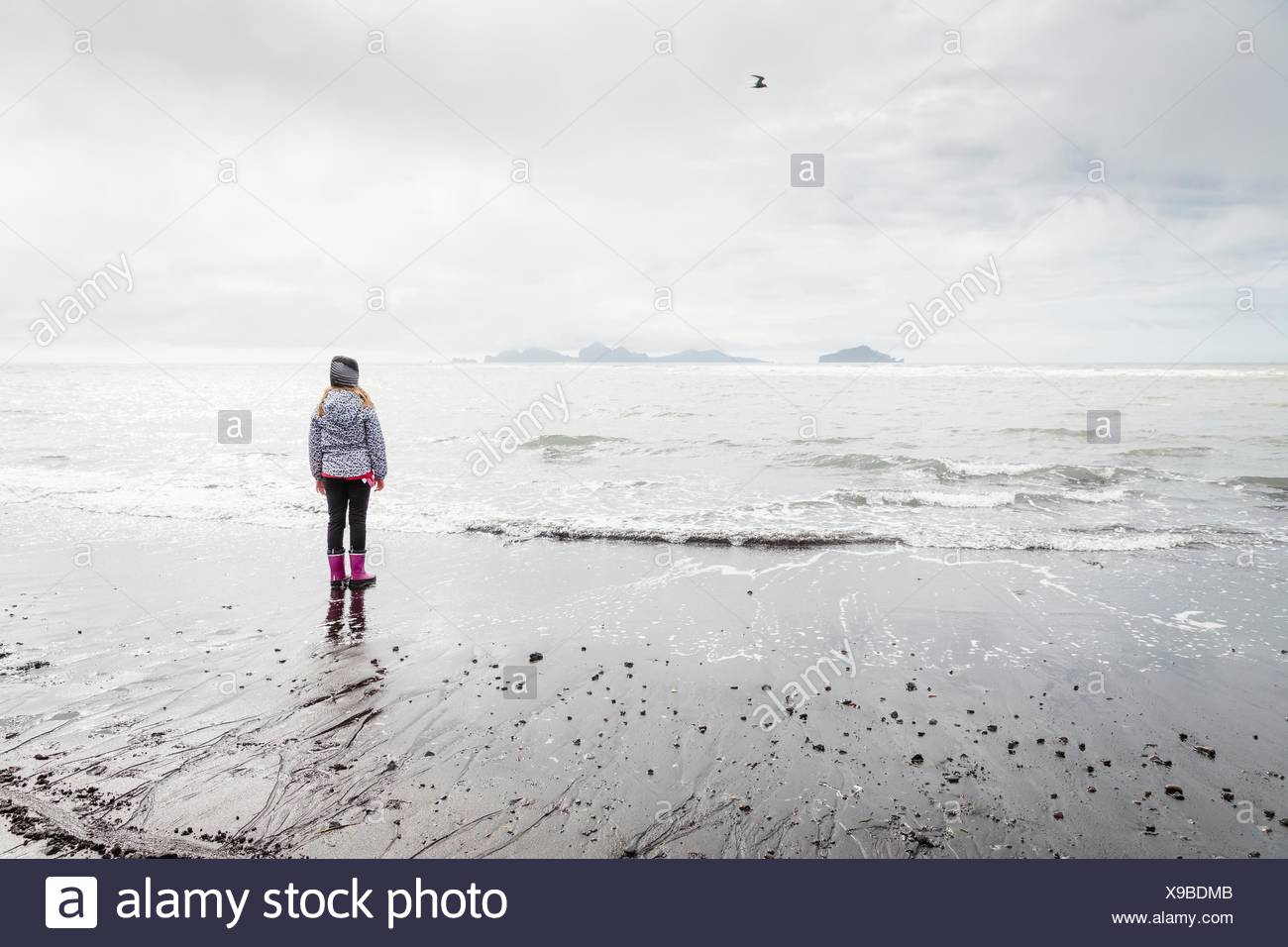 Jeune fille, Standing on beach, looking at view, vue arrière, Landeyjahofn, Islande Photo Stock