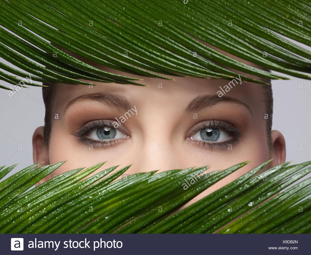 Les yeux d'une femme à la recherche à travers les feuilles vertes Photo Stock