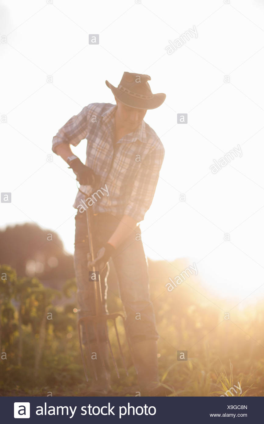 Young man working on ferme dans la lumière du soleil Banque D'Images
