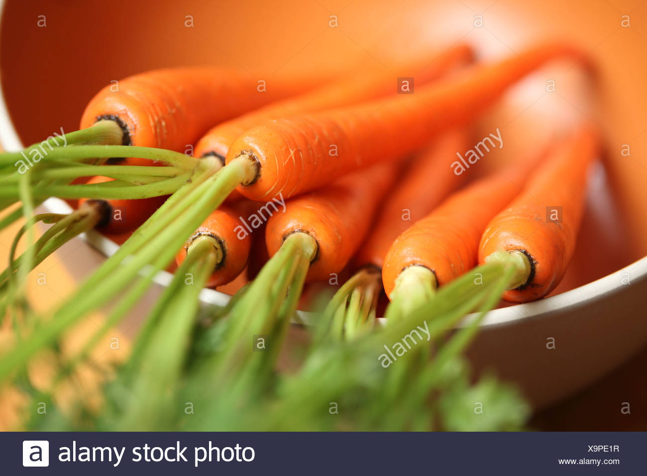 Carottes Photo Stock
