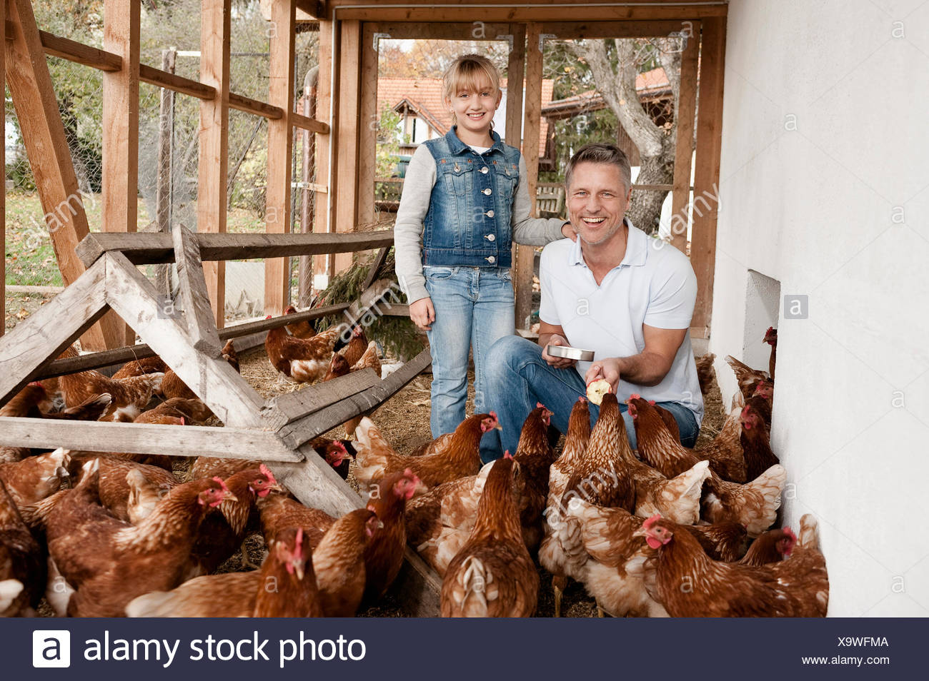 Père et fille en poulailler sur ferme bio Photo Stock