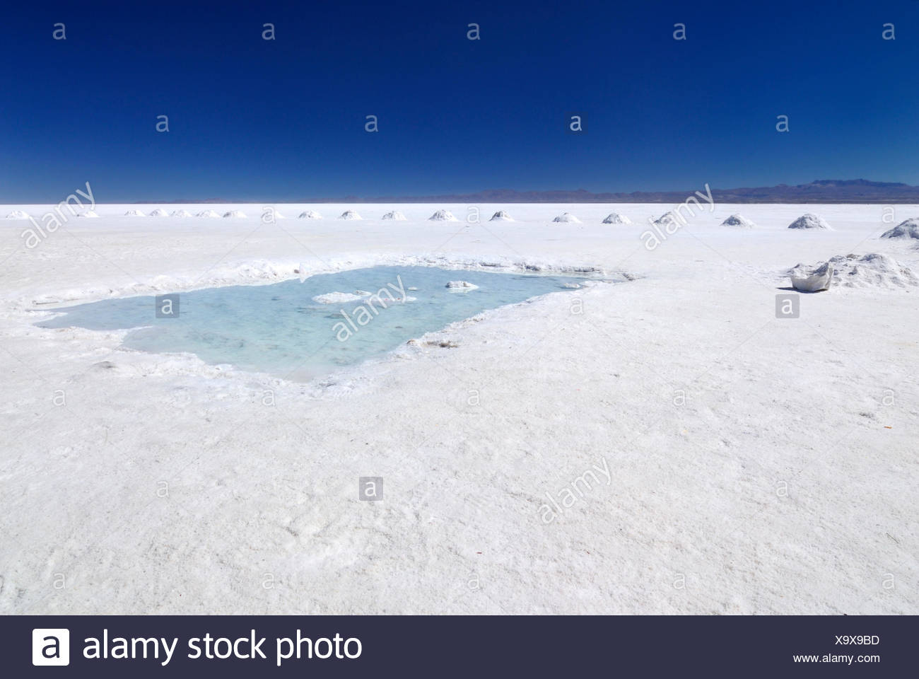 sel lac uyuni Photo Stock