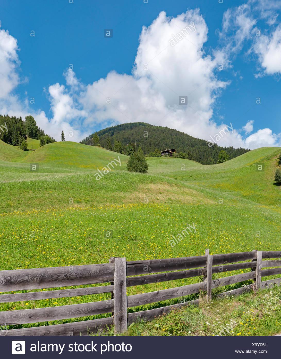 Sillian Autriche,Rolling hills au mont am Gerberbach 201 g Photo Stock