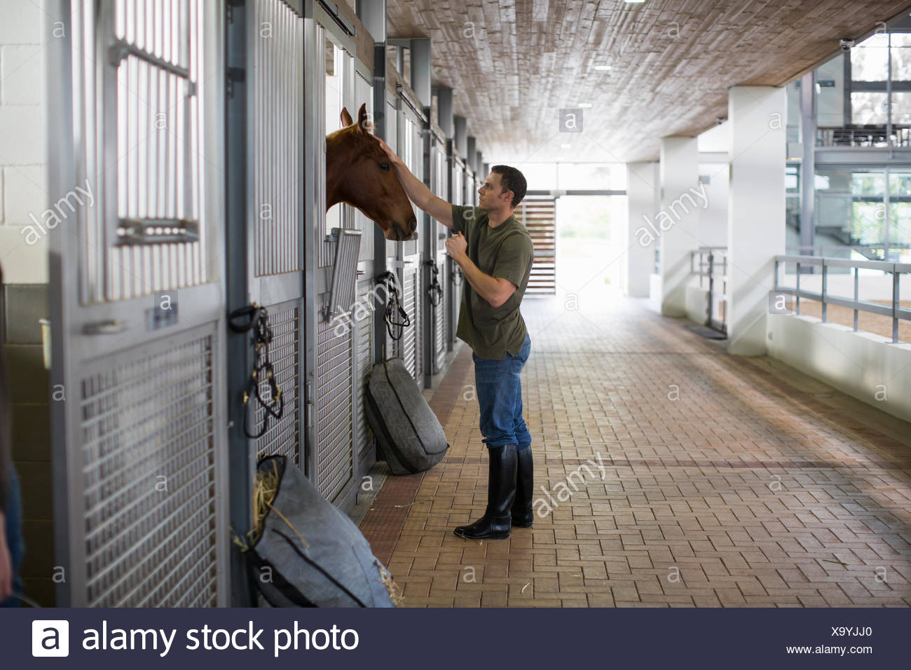 Homme stablehand petting horse en équitation Photo Stock