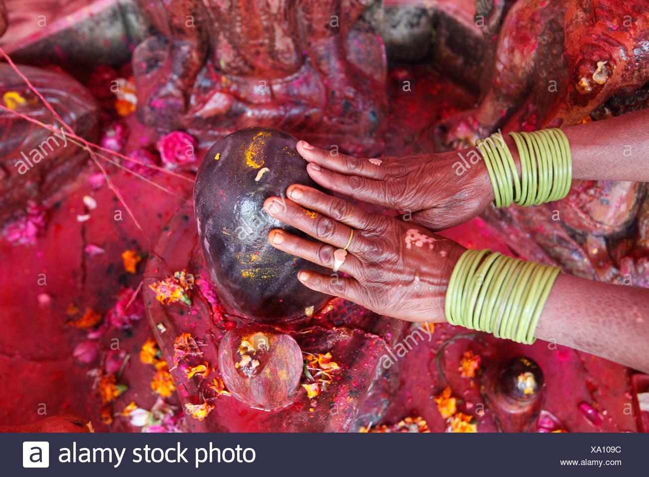 Holi célébration dans Goverdan. Femme hindoue adorant un lingam Goverdan. L'Inde. Photo Stock