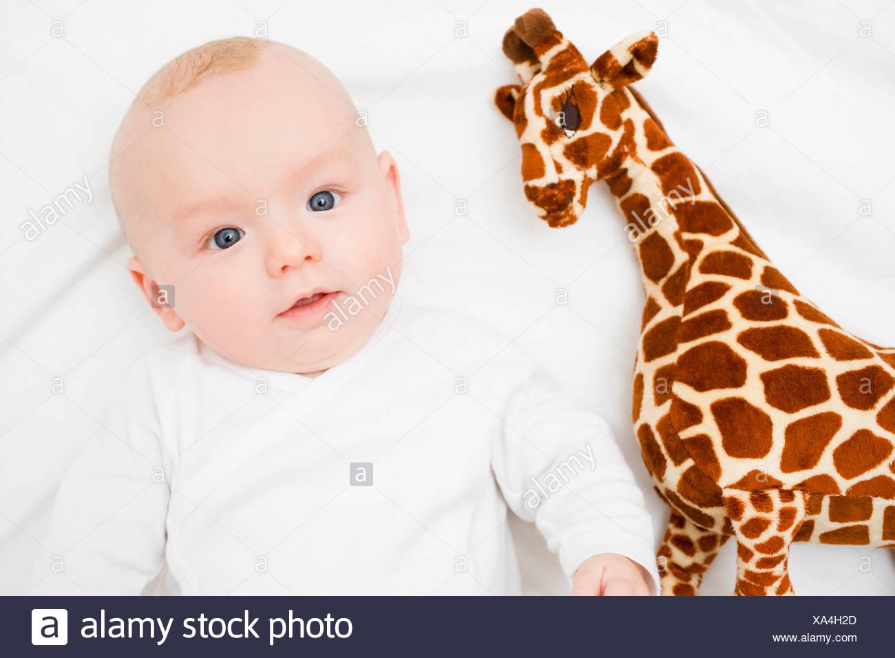 Pose bébé à côté d'une girafe en peluche Photo Stock