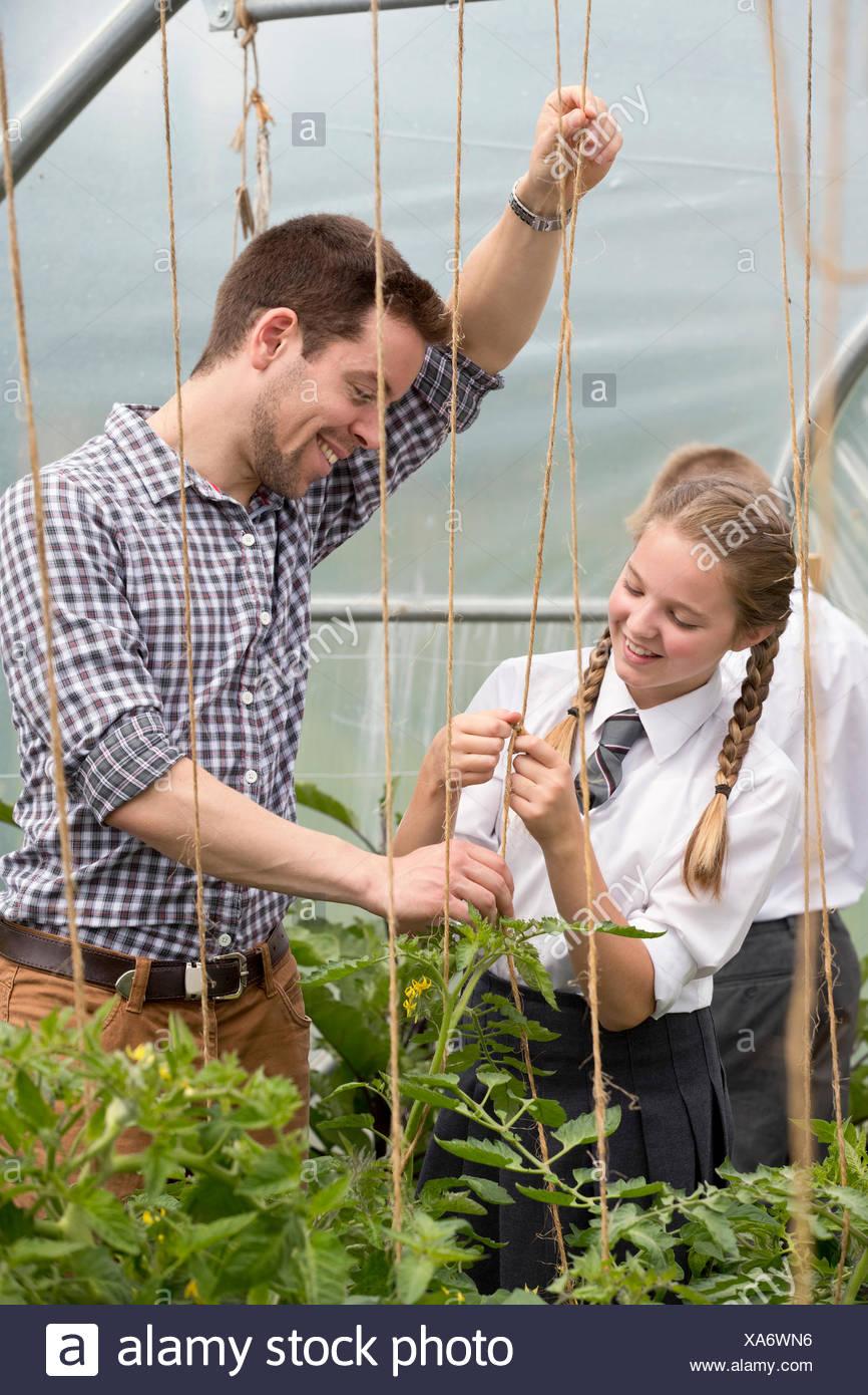 Enseignant de sexe masculin et de l'apprentissage d'écolière de filets de jardinage plants in greenhouse Photo Stock