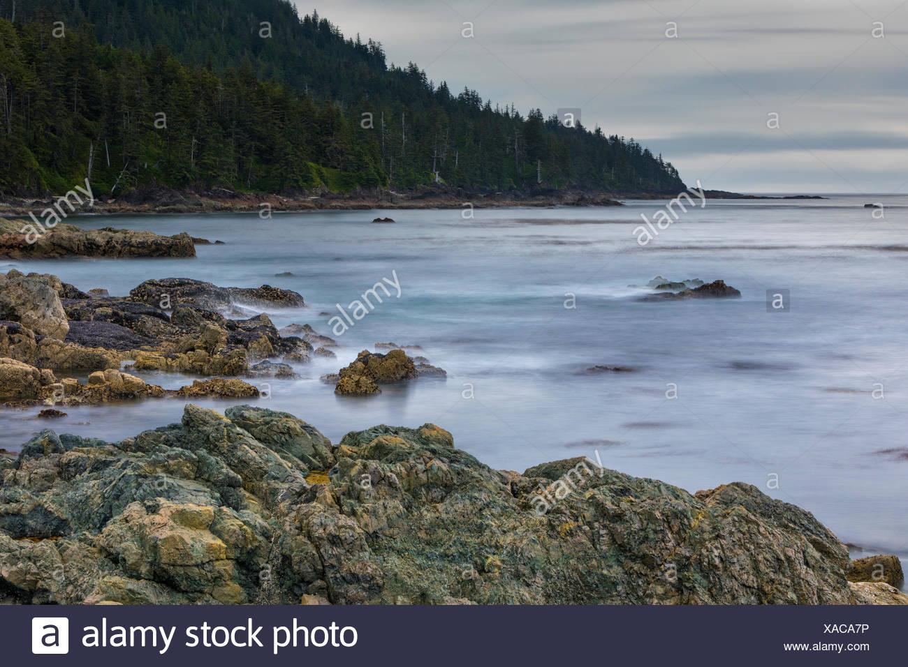 Jour nuageux pacifiques à cape palmerston, nord de l'île de Vancouver, Colombie britannique, Canada columbi Photo Stock