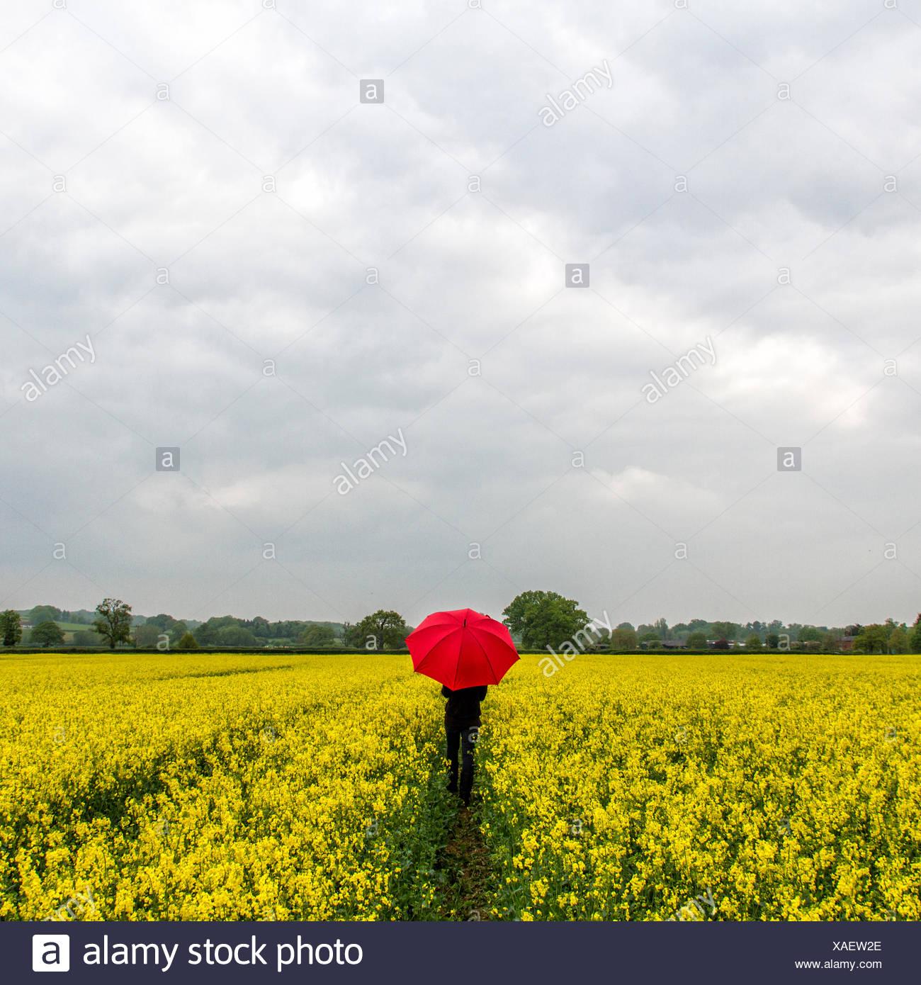 Femme debout avec parapluie rouge au milieu du champ Photo Stock