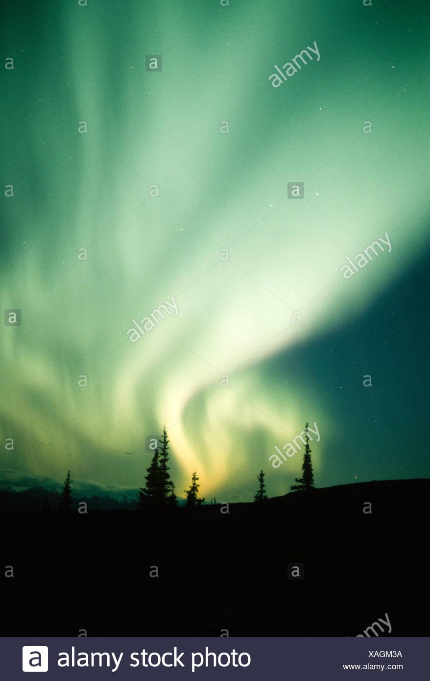 De l'Alaska. Denali NP. Aurora Borealis. Photo Stock