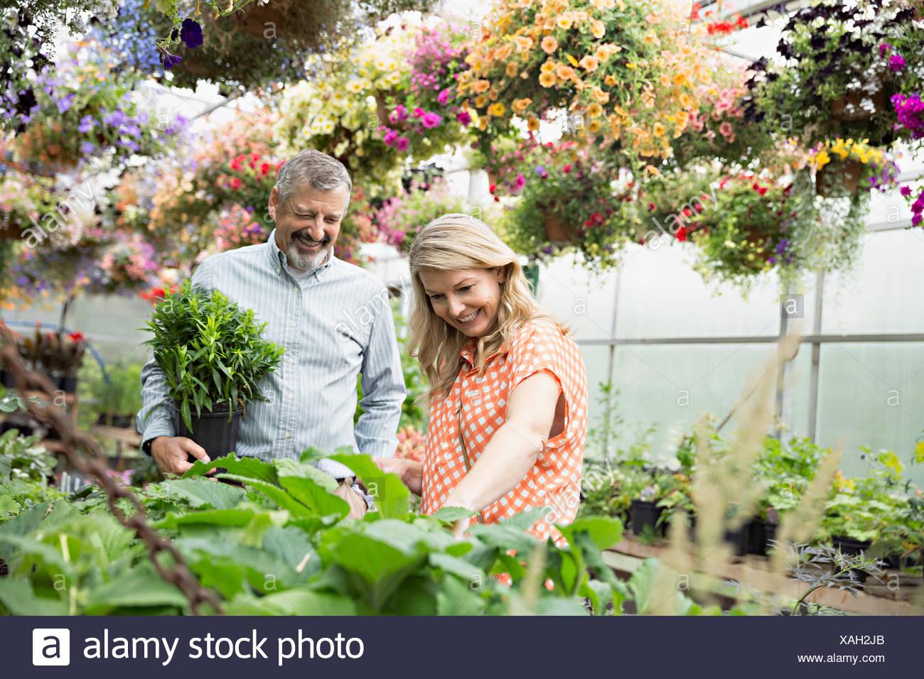 Couple shopping pour les plantes en serre pépinière Photo Stock