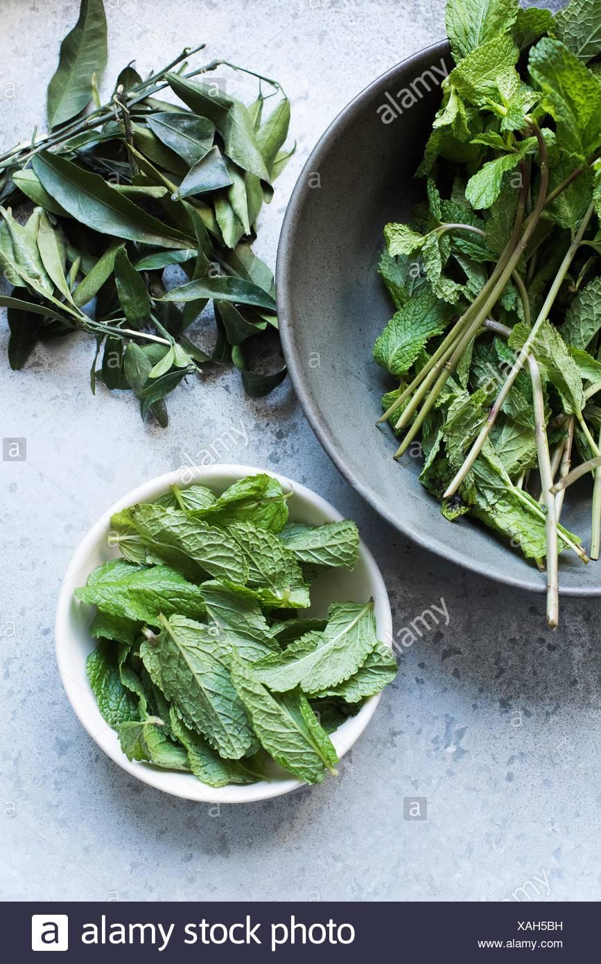 Vue de dessus les feuilles de menthe dans des bols Photo Stock