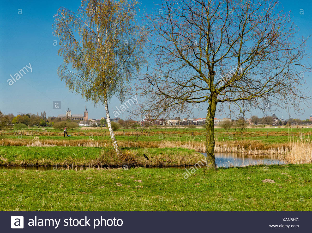 S-Hertogenbosch, Den Bosch, Pays-Bas, Hollande, Europe, paysage, champ, prairie, arbres, printemps, les gens, Photo Stock