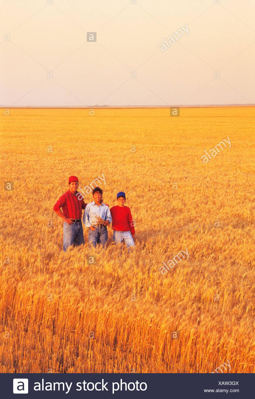 Agriculture - une famille agricole pose dans leur champ de blé à maturité avant la récolte / Manitoba, Canada. Photo Stock