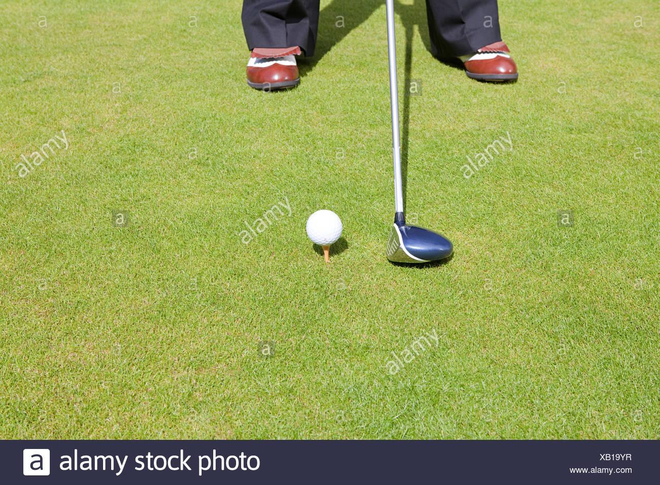 Portrait d'un golfeur Photo Stock
