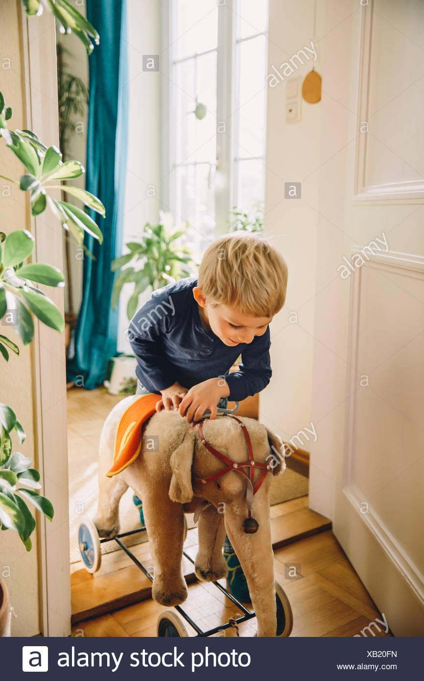 Garçon entrant dans une chambre avec des vieux éléphants en peluche Photo Stock