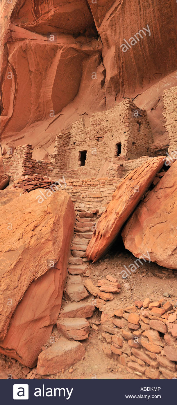 Habitation anasazi, falaise, ruine, Monticello, River House, San Juan, Bluff, du Plateau du Colorado, Utah, USA, United States, Ameri Photo Stock