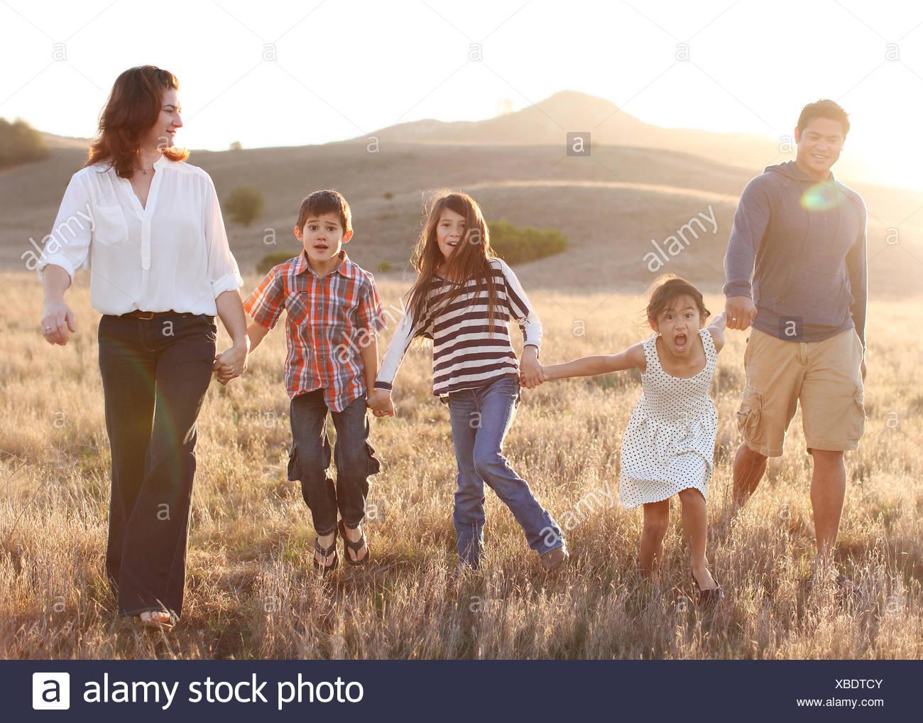 Famille de cinq se tenir la main, marcher dans le pré Photo Stock