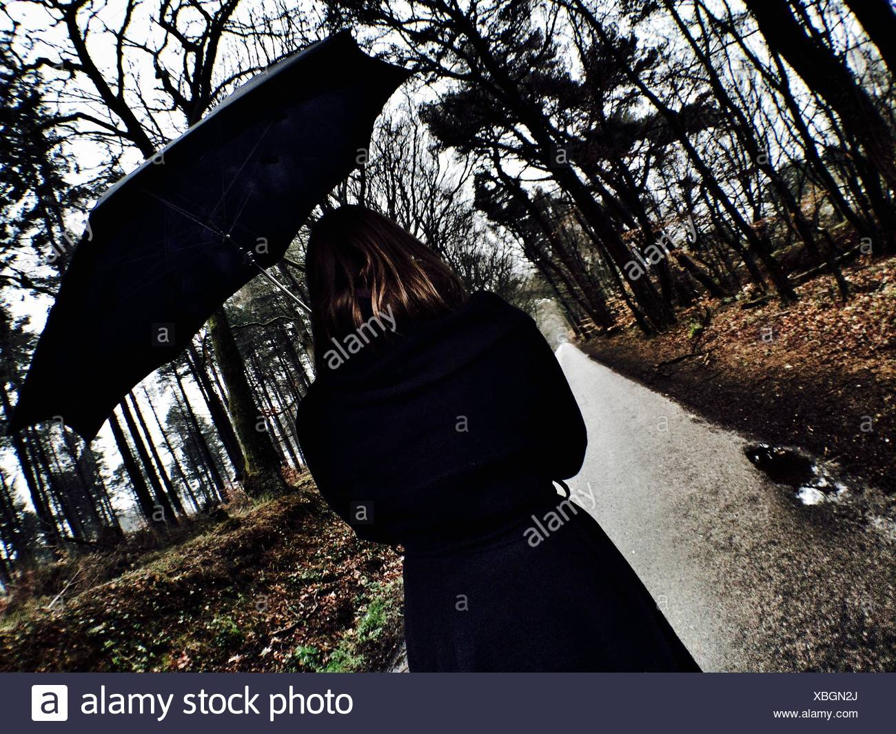 Rear View of Woman Holding Umbrella Walking on Pathway au milieu d'arbres Photo Stock