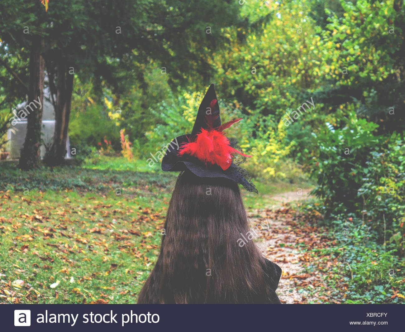 Rear View of Woman Wearing Hat et l'article sur le terrain au milieu des arbres Photo Stock