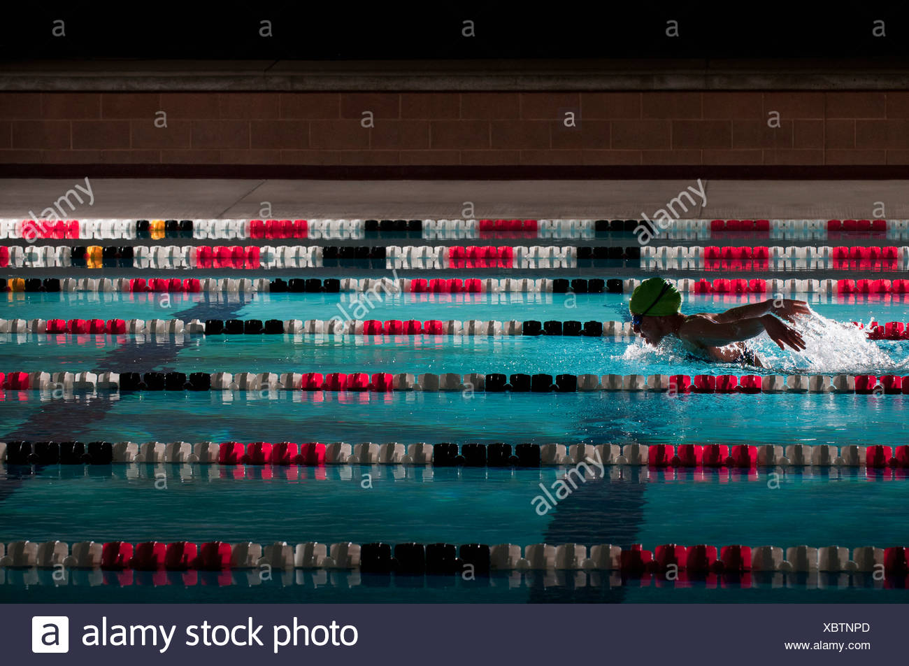 Woman swimming laps in pool Photo Stock