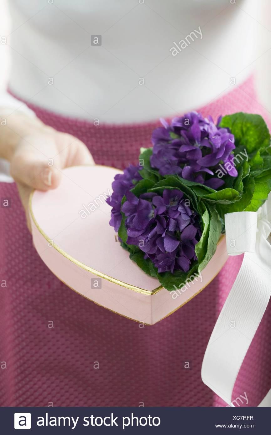 bouquet de violettes avec boîte cadeau en forme de cœur banque d