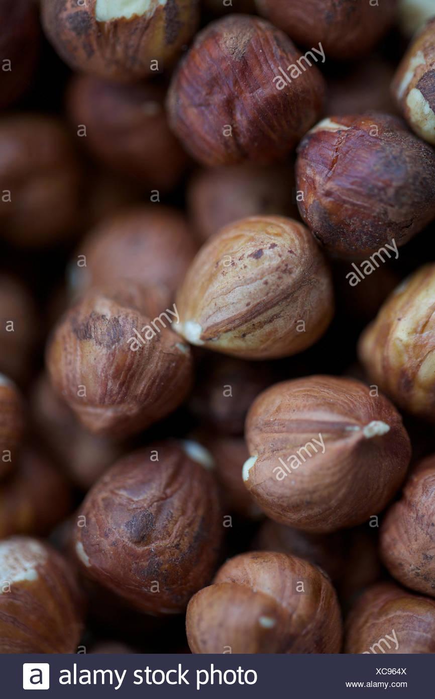 Tas de noisettes fraîches. L'alimentation, snack, des fruits secs, des éléments nutritifs. Photo Stock
