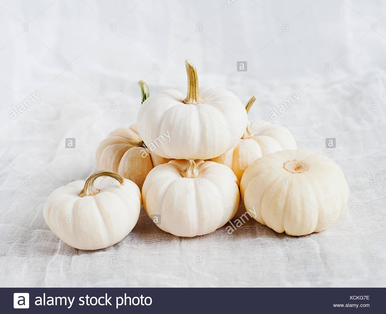 Les petites citrouilles blanches Photo Stock