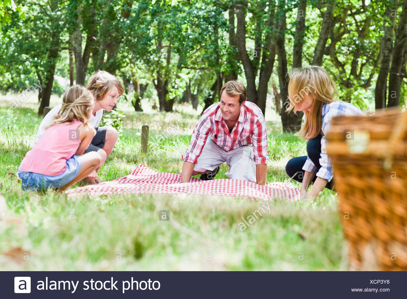 Family having picnic in park Photo Stock