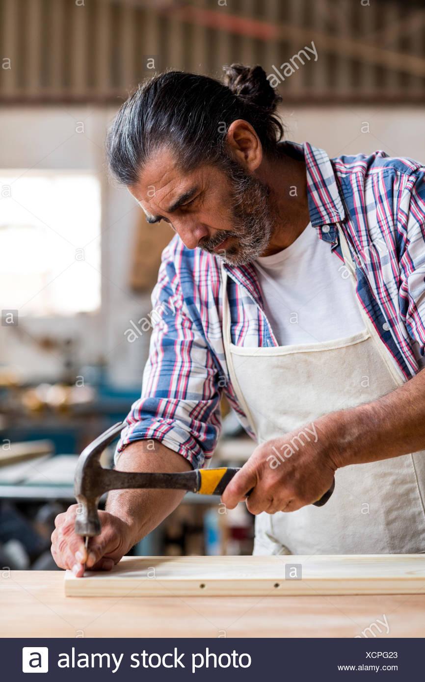 Carpenter holding a hammer à conduire des clous dans une planche en bois Banque D'Images