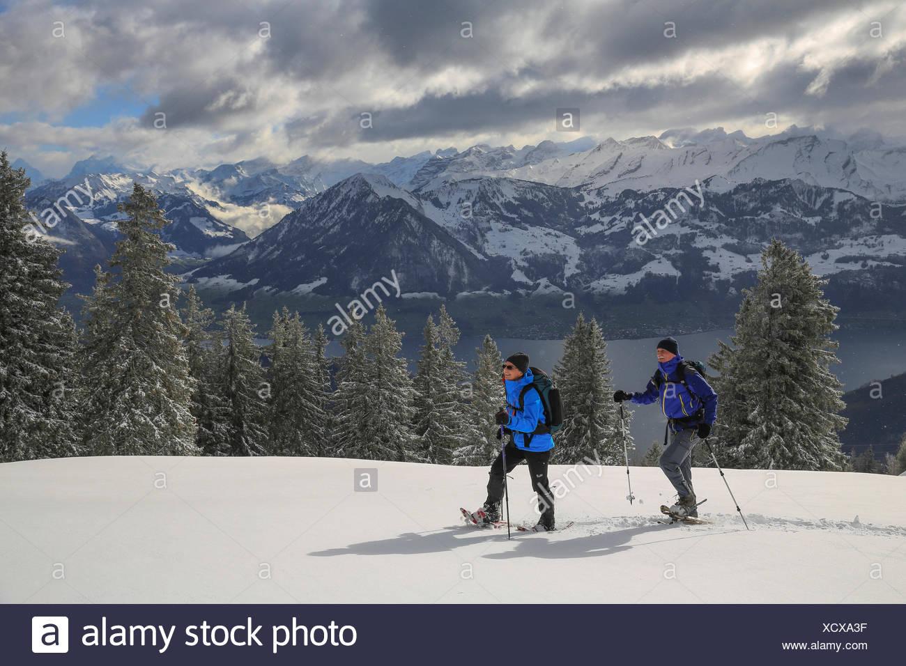 L'exécution de chaussures de neige, Rigi, montagne, montagnes, l'hiver, sports d'hiver, canton, LU, Lucerne, canton, SZ, Schwyz, central Switzerl Photo Stock