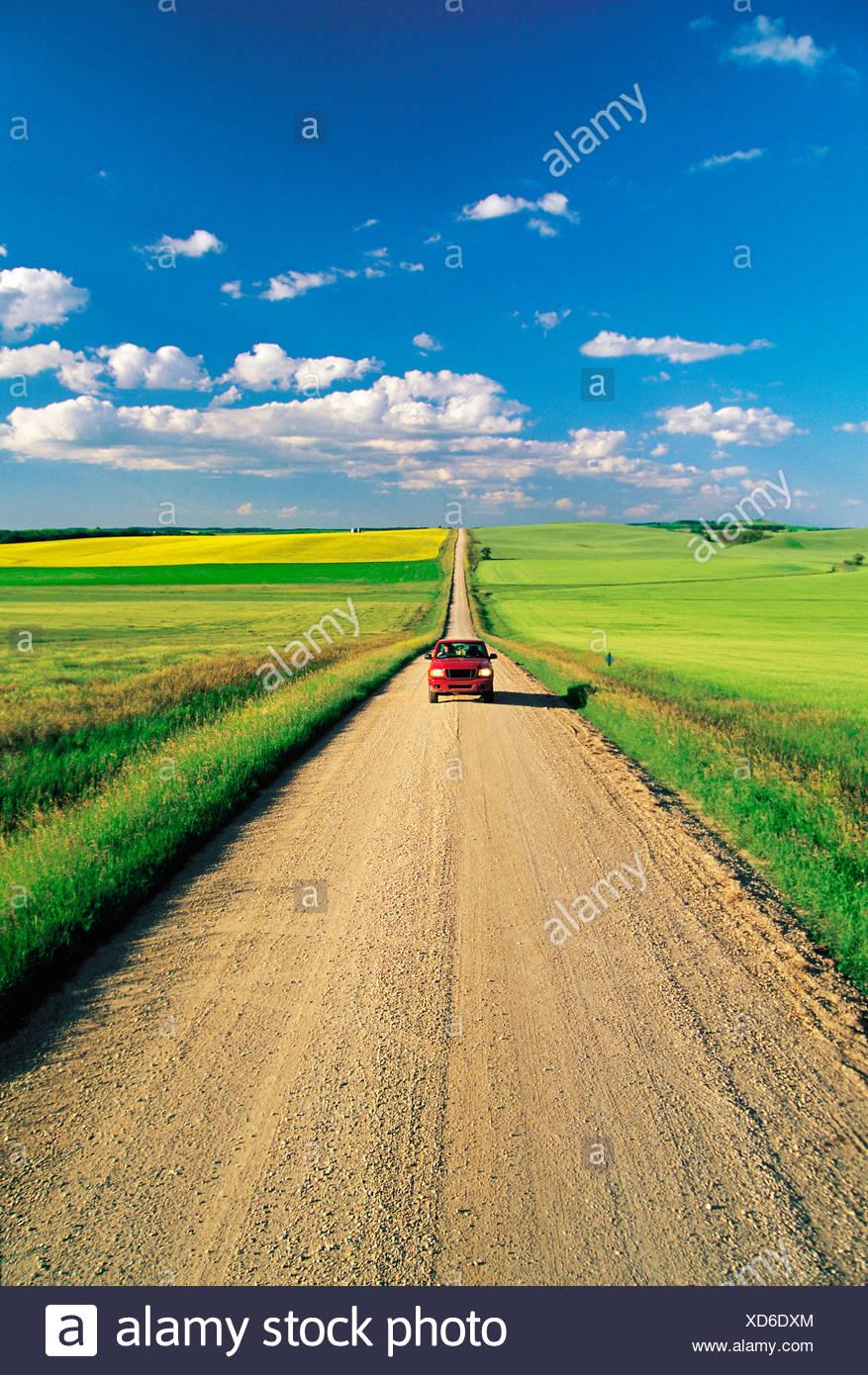 Route de campagne des terres agricoles, Tiger Hills, Manitoba, Canada Photo Stock